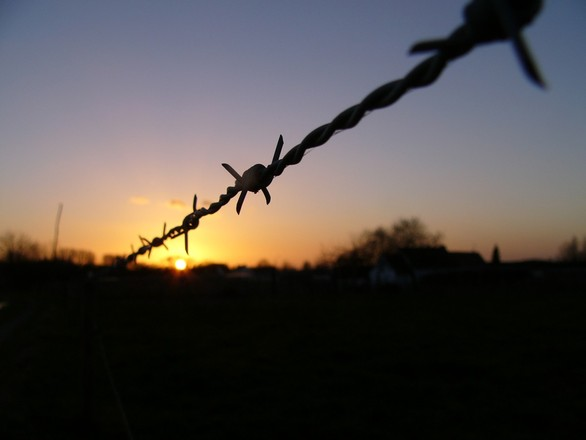 wired-sunset-1519523